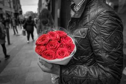 bouquet-roses-colorful-floral-428611.jpeg